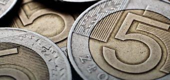 Złoty umacnia się po decyzjach EBC